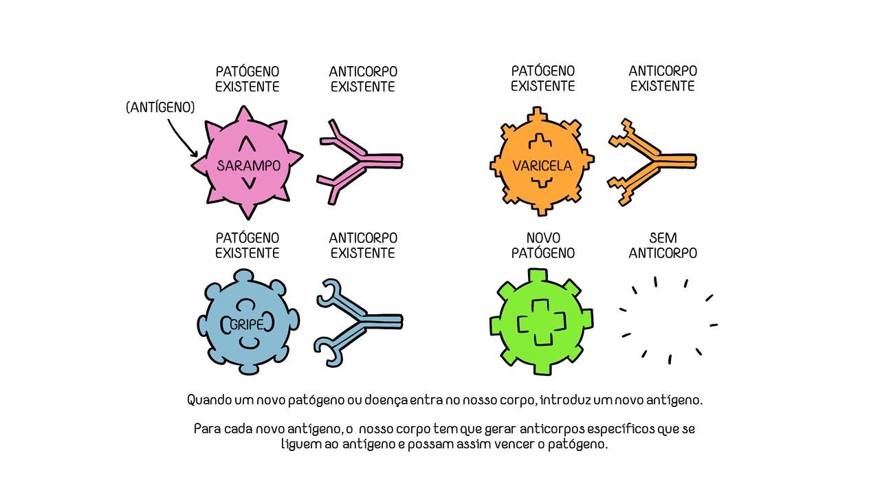 antigeno